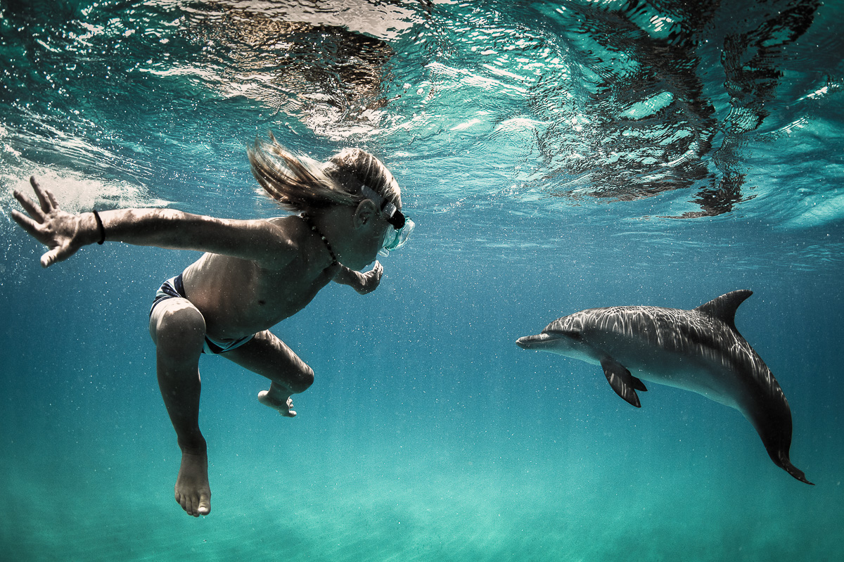 small boy child dive swim with wild dolphins underwater bahamas