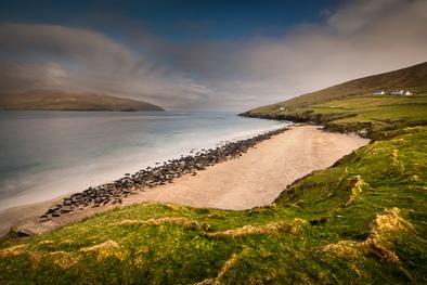 great_blasket_beach_grey_seal_colony