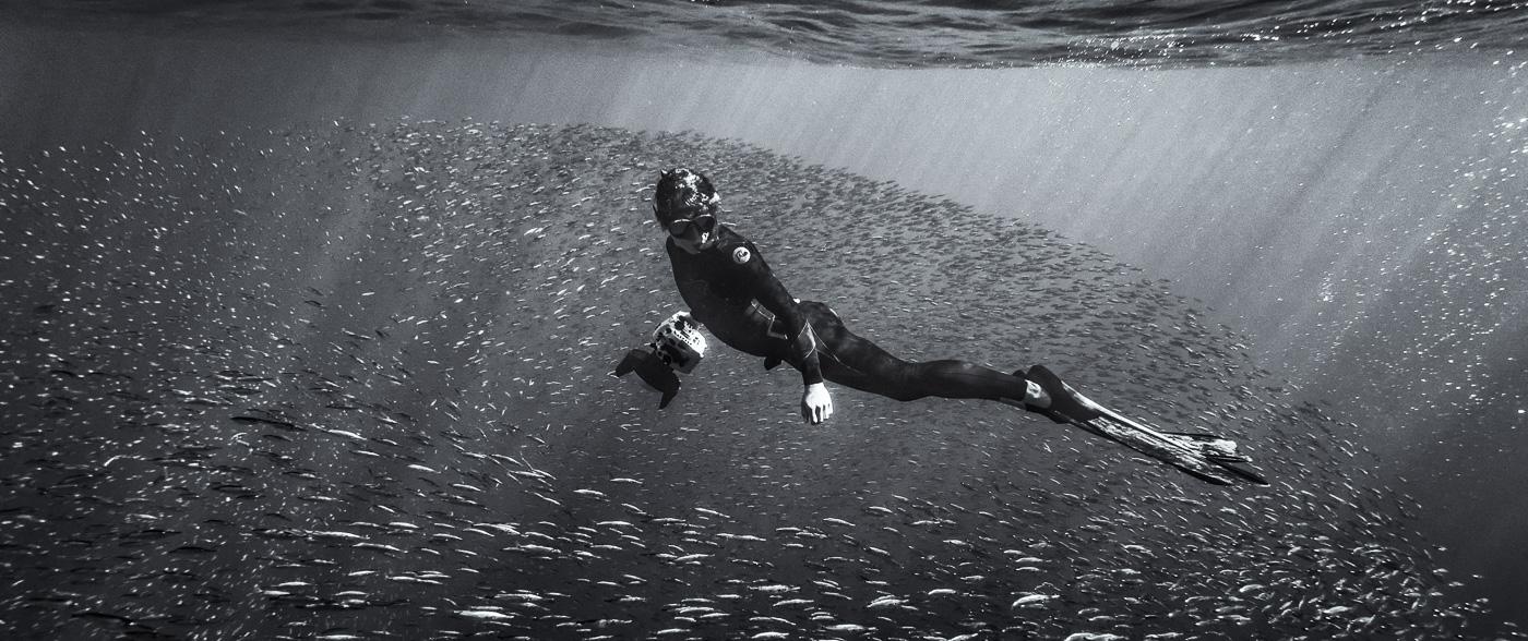underwater photography Ireland